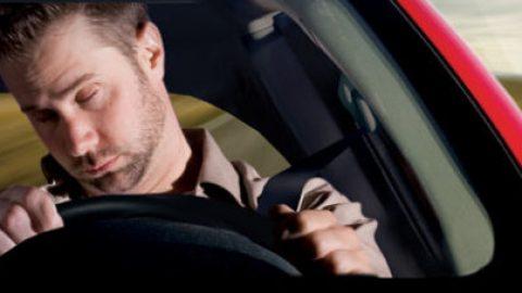 La dieta del conducente