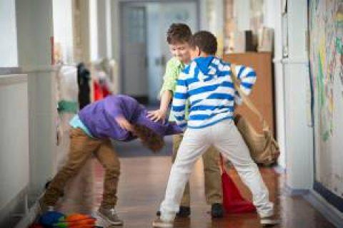 Il bullismo come fenomeno di devianza giovanile in netta crescita: ricadute sociali e pratiche di intervento.